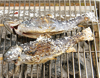 食材うまい焼き方イメージ写真